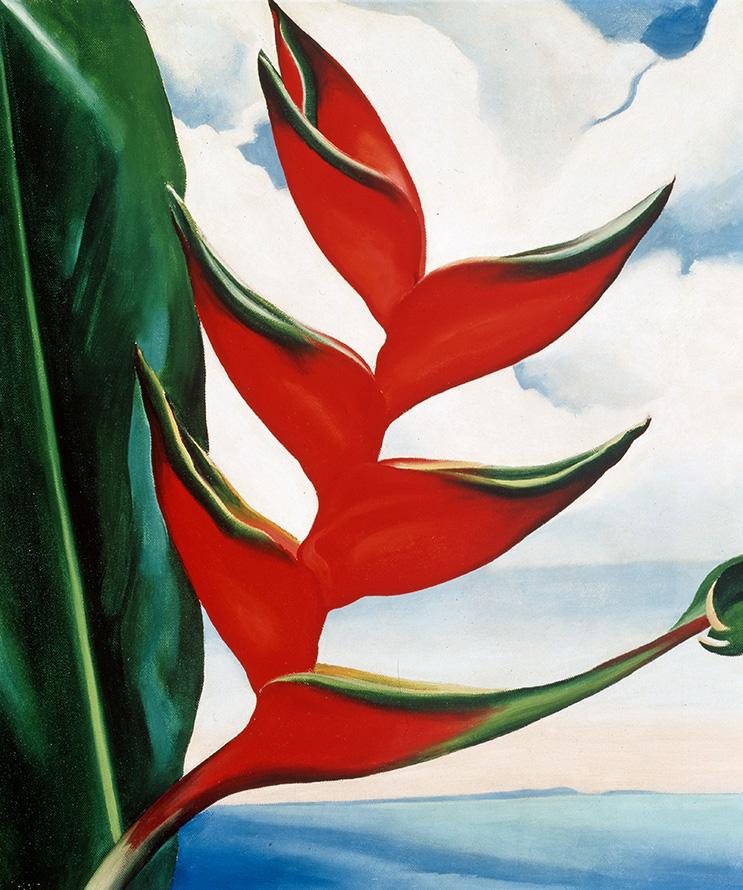 Georgia O'Keeffe Hawaii