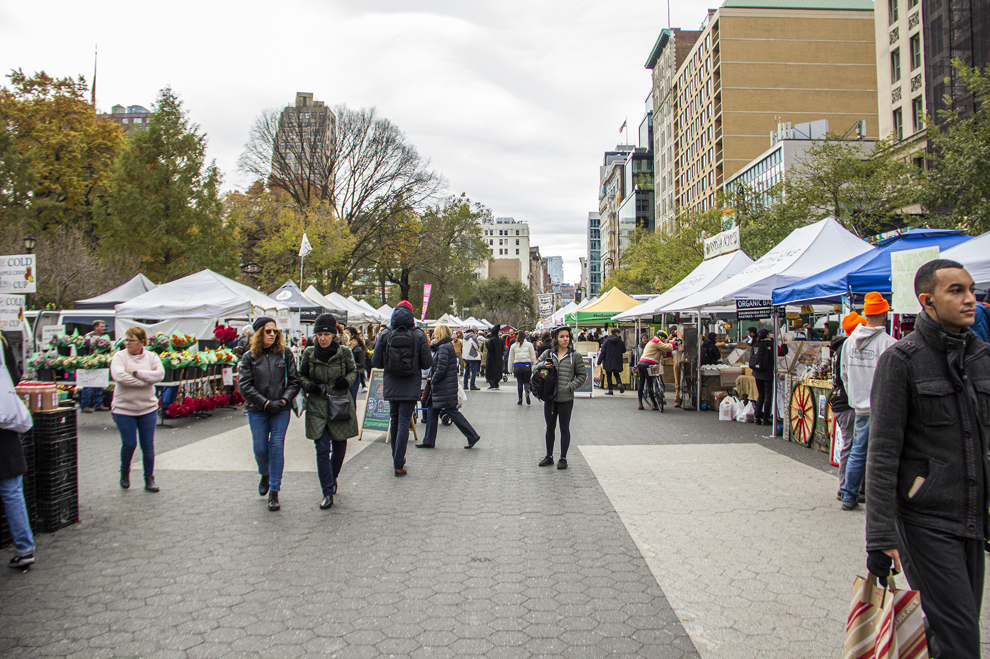 grownyc union square greenmarket